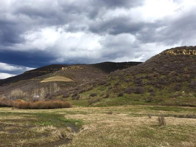 Land reclamation efforts in progress above West Elk Mine