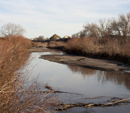 Colorado health officials want better monitoring and cleanup of toxic PFAS chemicals in state's water