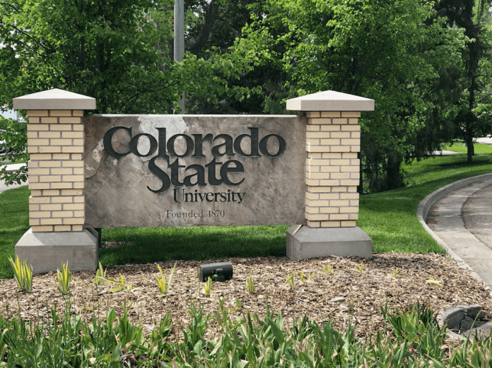 CSU was sued by a former minimum-wage employee, who is now among more than 1,500 workers eligible for repayment of lost wages from the university. (Photo by Austin Fleskes)