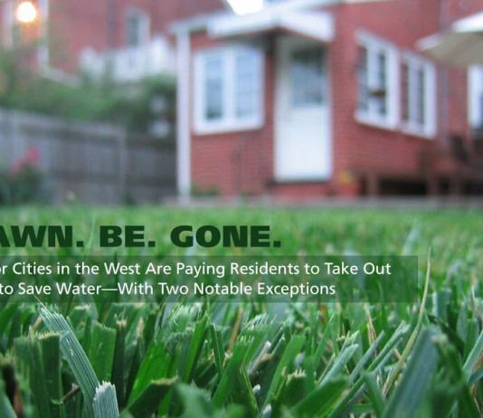 Major Western cities pay residents to rip out their lawns to save water. Why isn't Denver?