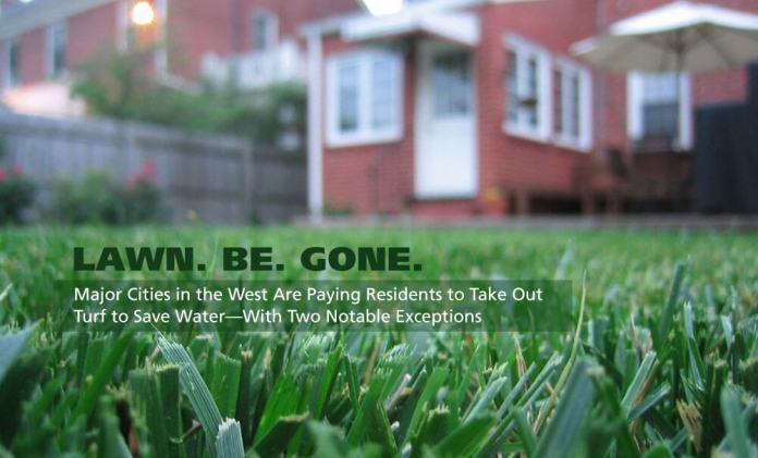 Americans are ditching grass lawns for water conservation