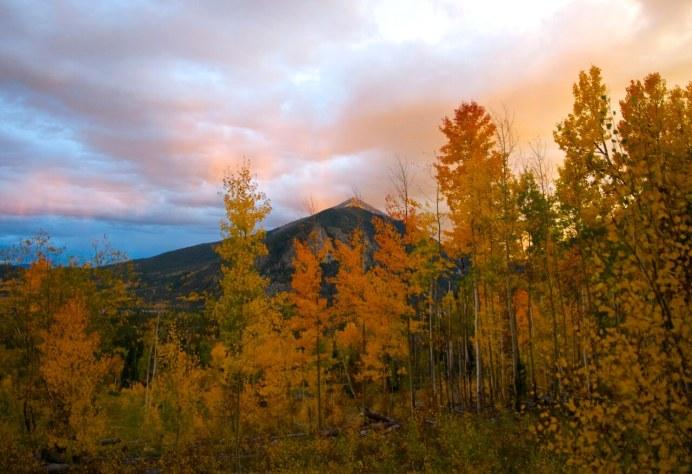 Autumn glory in the Tenmile Range near Frisco, Colorado.