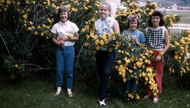Crockett family girls, 1966, Rifle, Colorado.