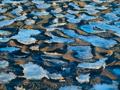A dimpled mud flat along the receding edge of Dillon Reservoir captures remnant lenses of ice.