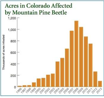 pine beetles acres by year