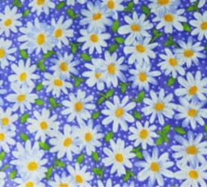 daisiies on purple