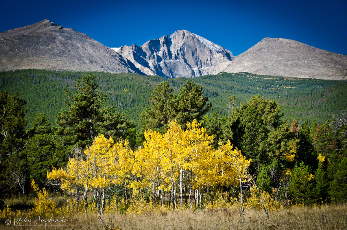 Pictures of Colorado Fall Colors  Peak Viewing Times