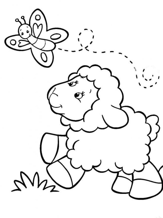 Coloriage Agneau et papillon dessin gratuit à imprimer