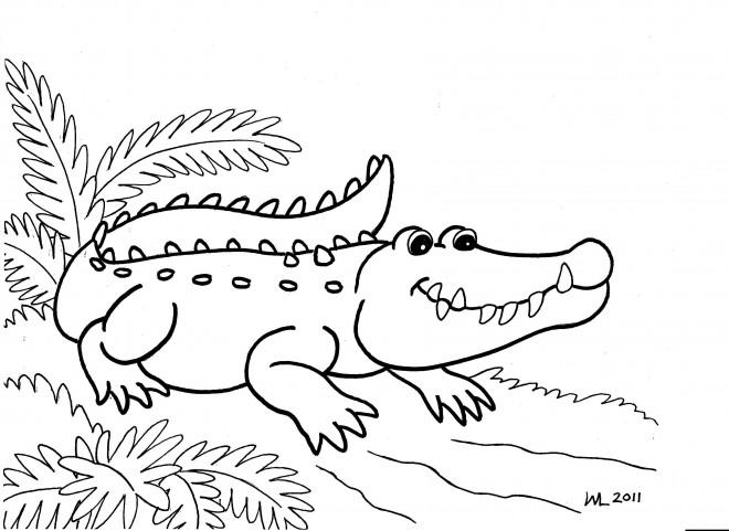 Coloriage Alligator facile dessin gratuit à imprimer