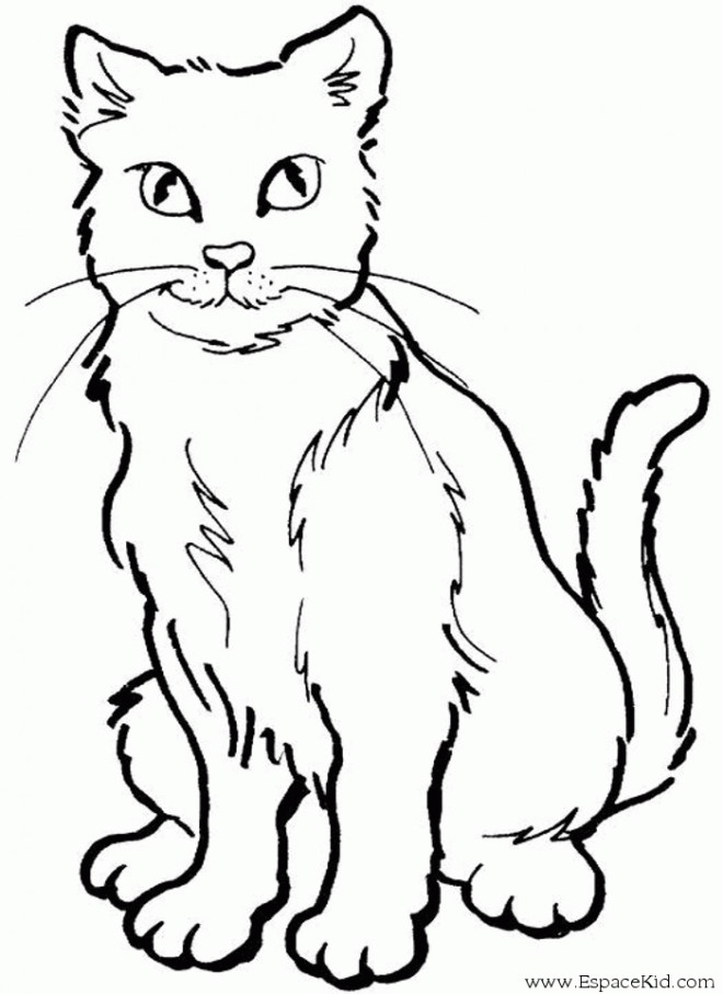 Cat Coloring Pages To Print Printable Cats Warrior Dog
