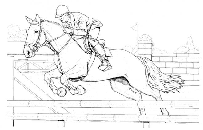 Coloriage Cheval de course dessin gratuit à imprimer