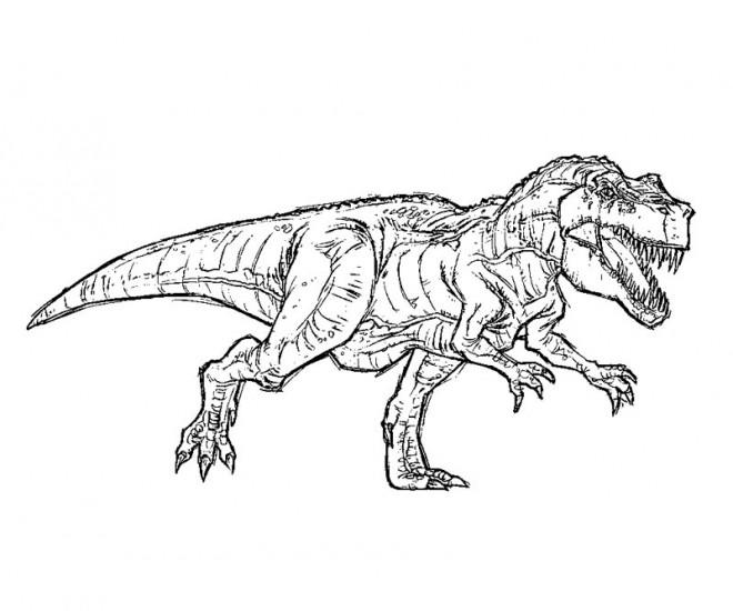Dinossauro Rei Para Colorir