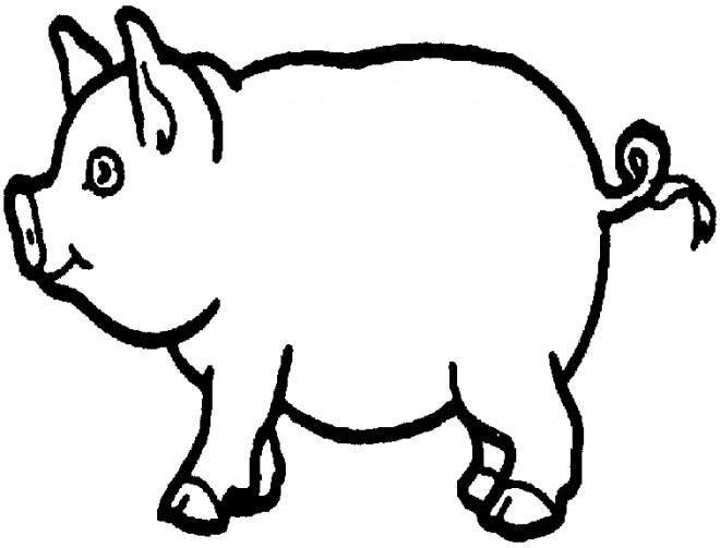 Coloriage Porc au crayon dessin gratuit à imprimer