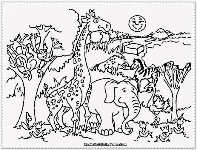 Coloriage Animaux en plein air dessin gratuit à imprimer