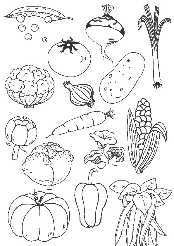 Nature Legumes And Fruit