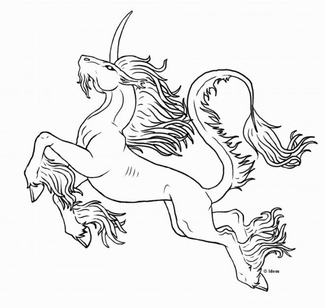 dessin à imprimer: Dessin A Imprimer De Licorne Magique