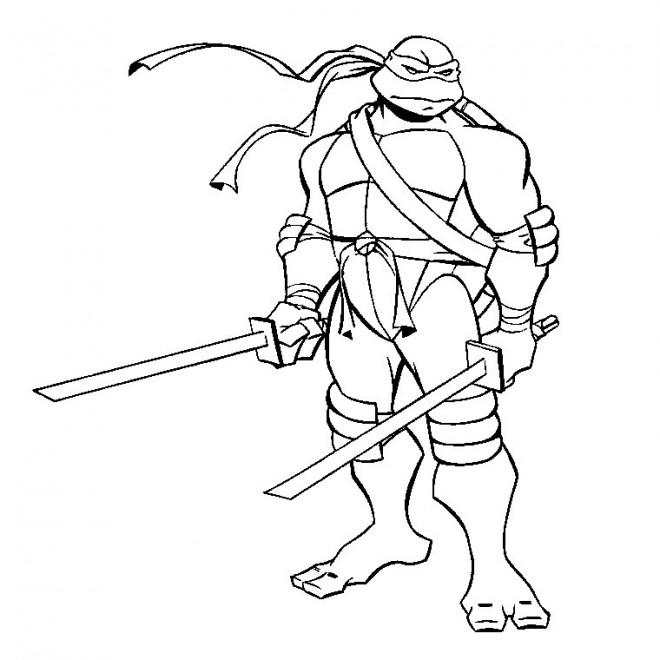 Ninjago Loyd