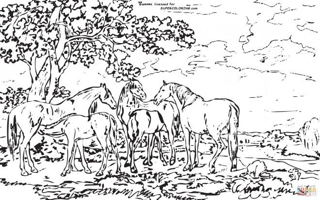 Coloriage Adulte Paysage La Nature dessin gratuit à imprimer