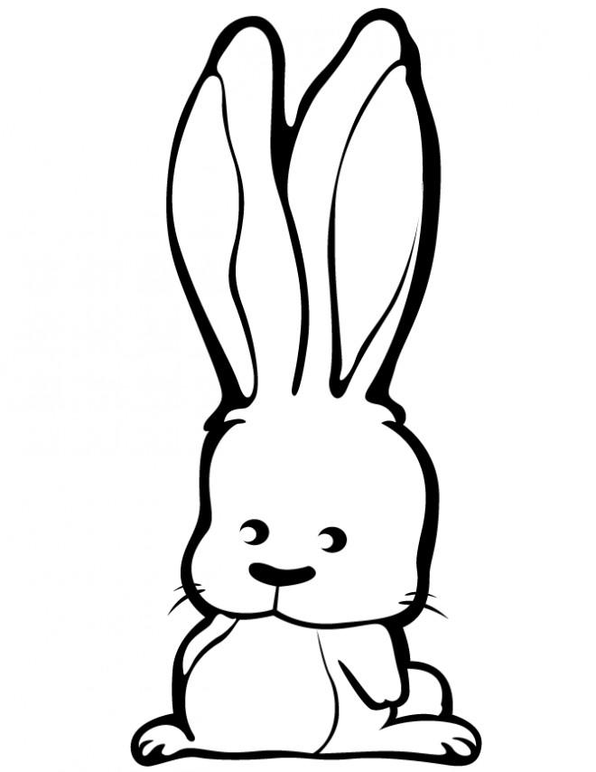 petit lapin mignon dessin