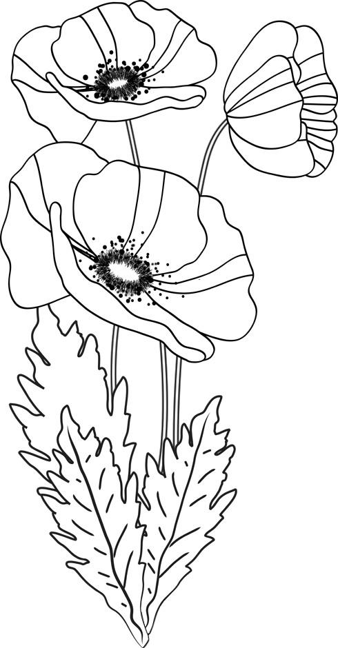 Coloriage Fleur Facile Simple