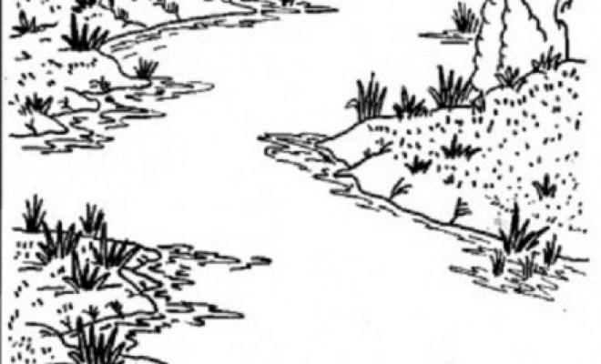 coloriage rivière en noir et blanc dessin gratuit à imprimer