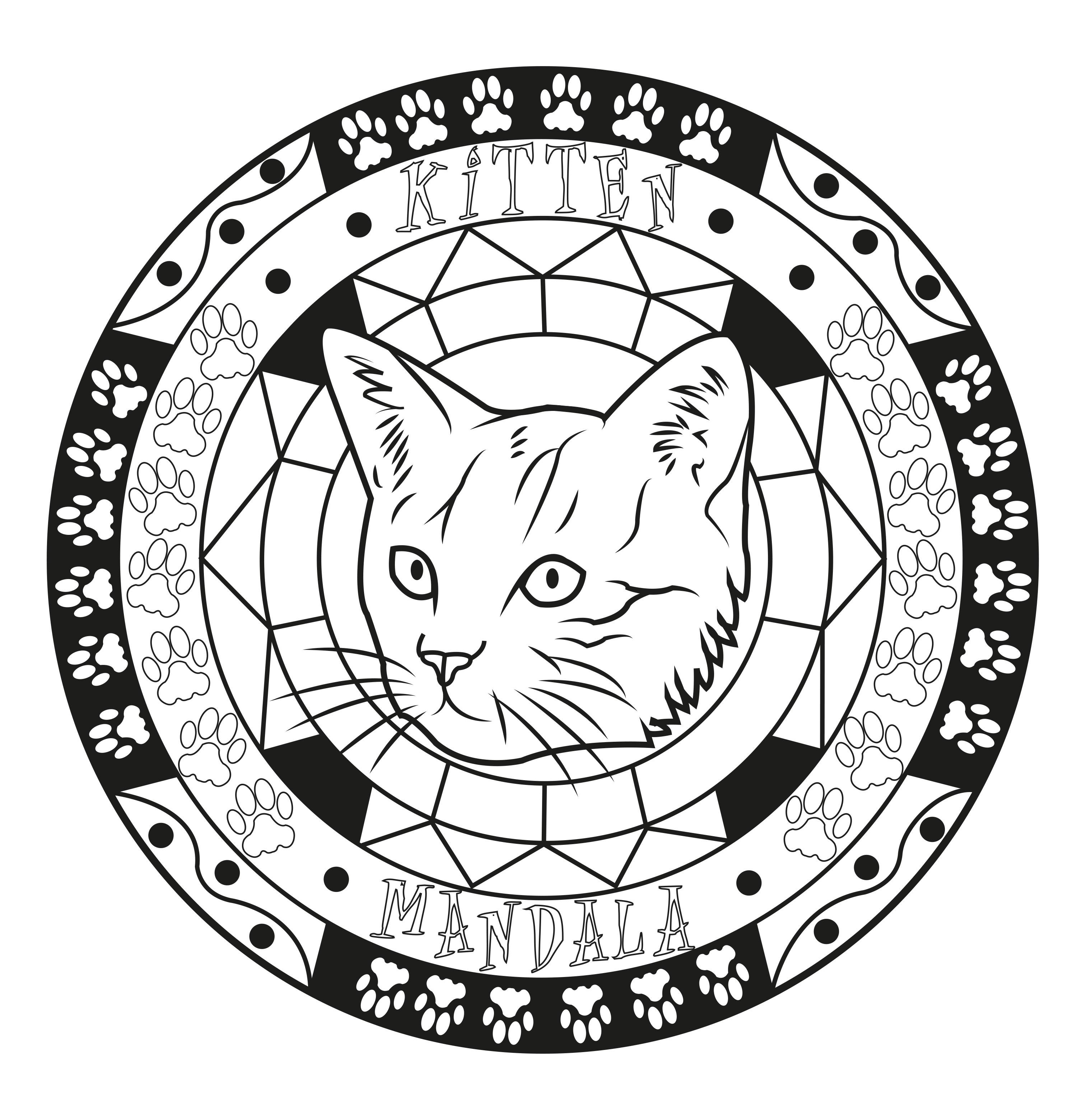coloriage mandala chat imprimer l dessincoloriage
