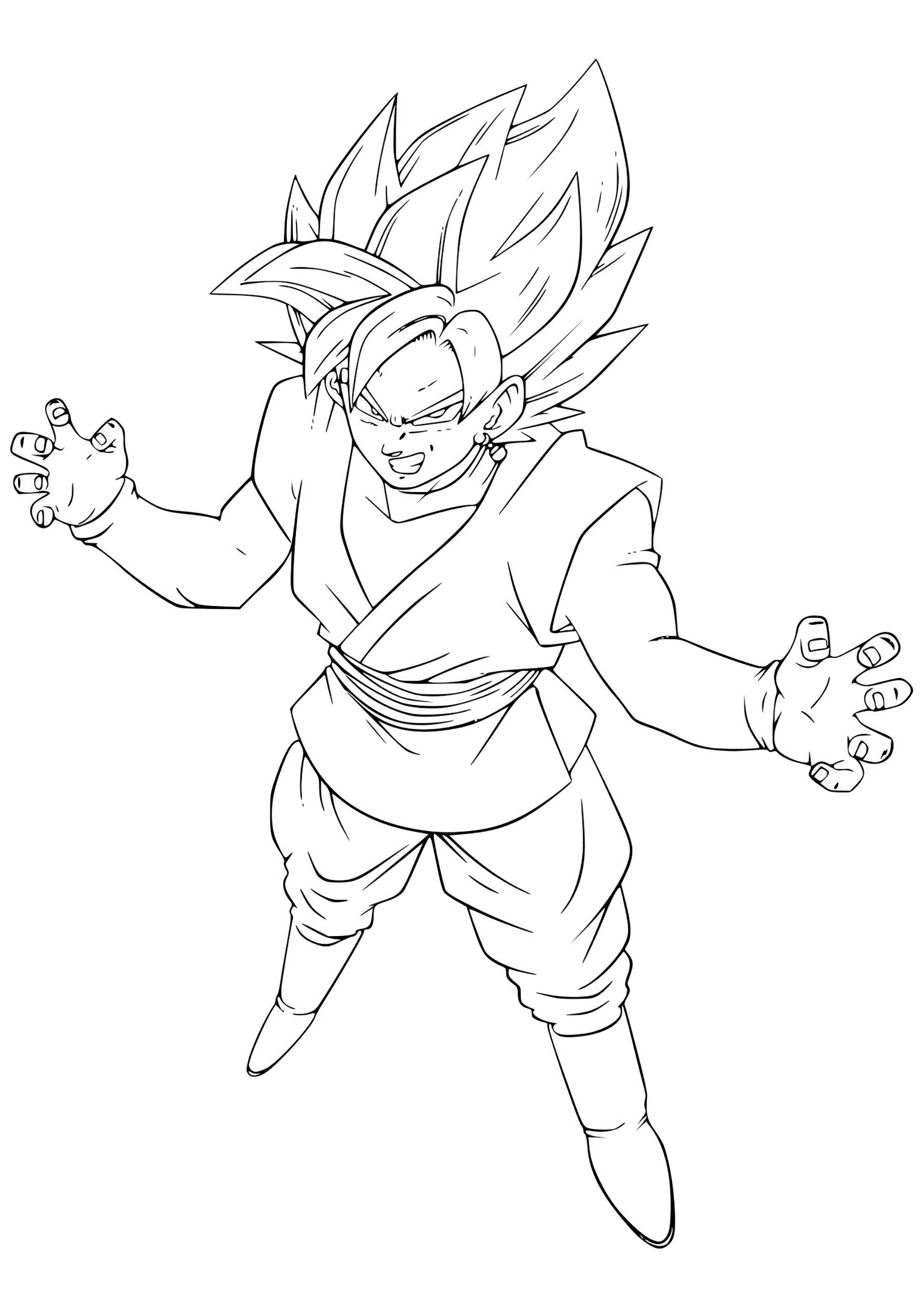 Black Pink Goku Coloriage Dragon Ball Z Coloriages