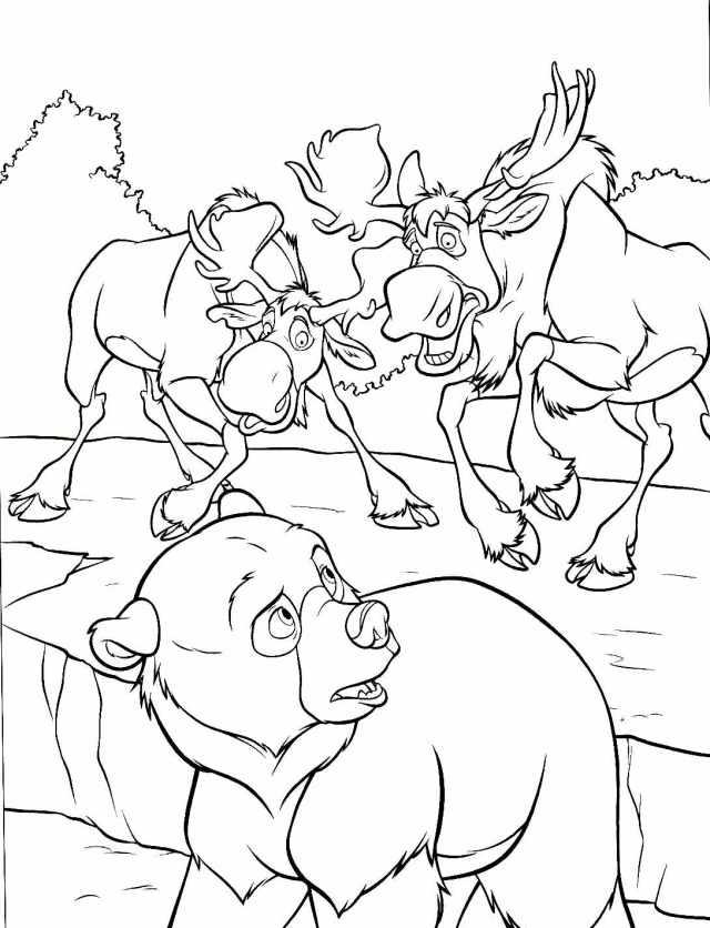 Image de Frère des ours à télécharger et colorier - Coloriage