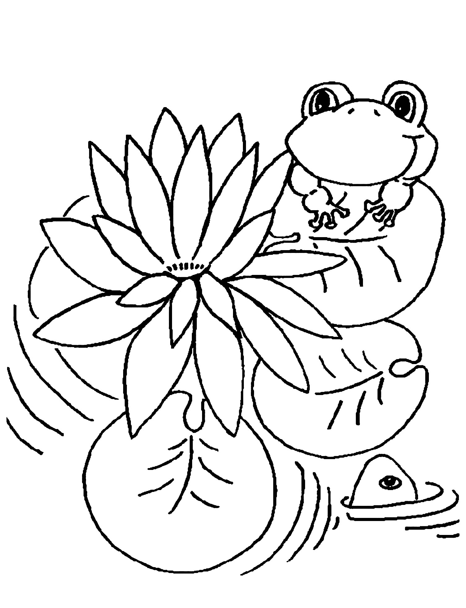 Frog On Lily Pad Coloring Page Lovely Lily Pad Coloring