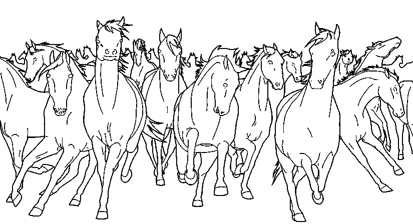 Art Therapy coloring page Horses : Wild horses 10