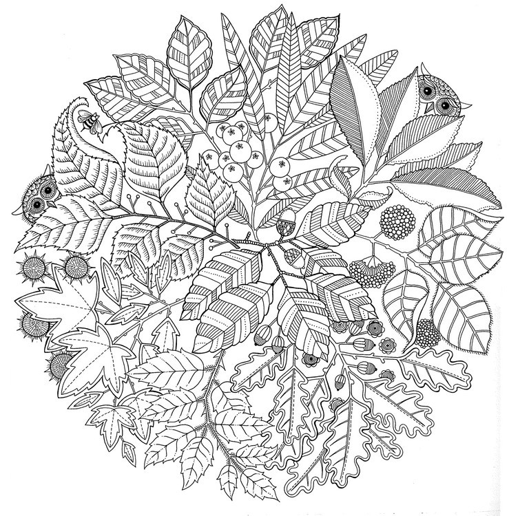 Ausmalen als Anti-Stress Herbst  Mandala 1