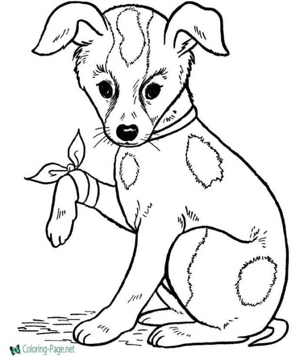 dog printable coloring pages # 2