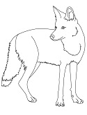 Mojave Desert Coloring Pages