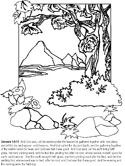 Creation Bible Coloring Pages