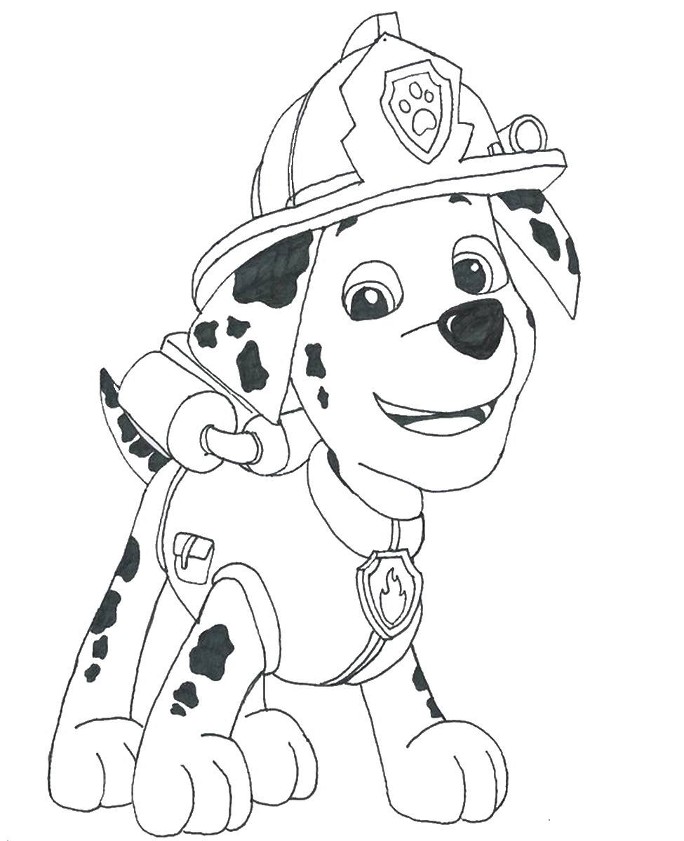 1000+ images about Paw Patrol on Pinterest