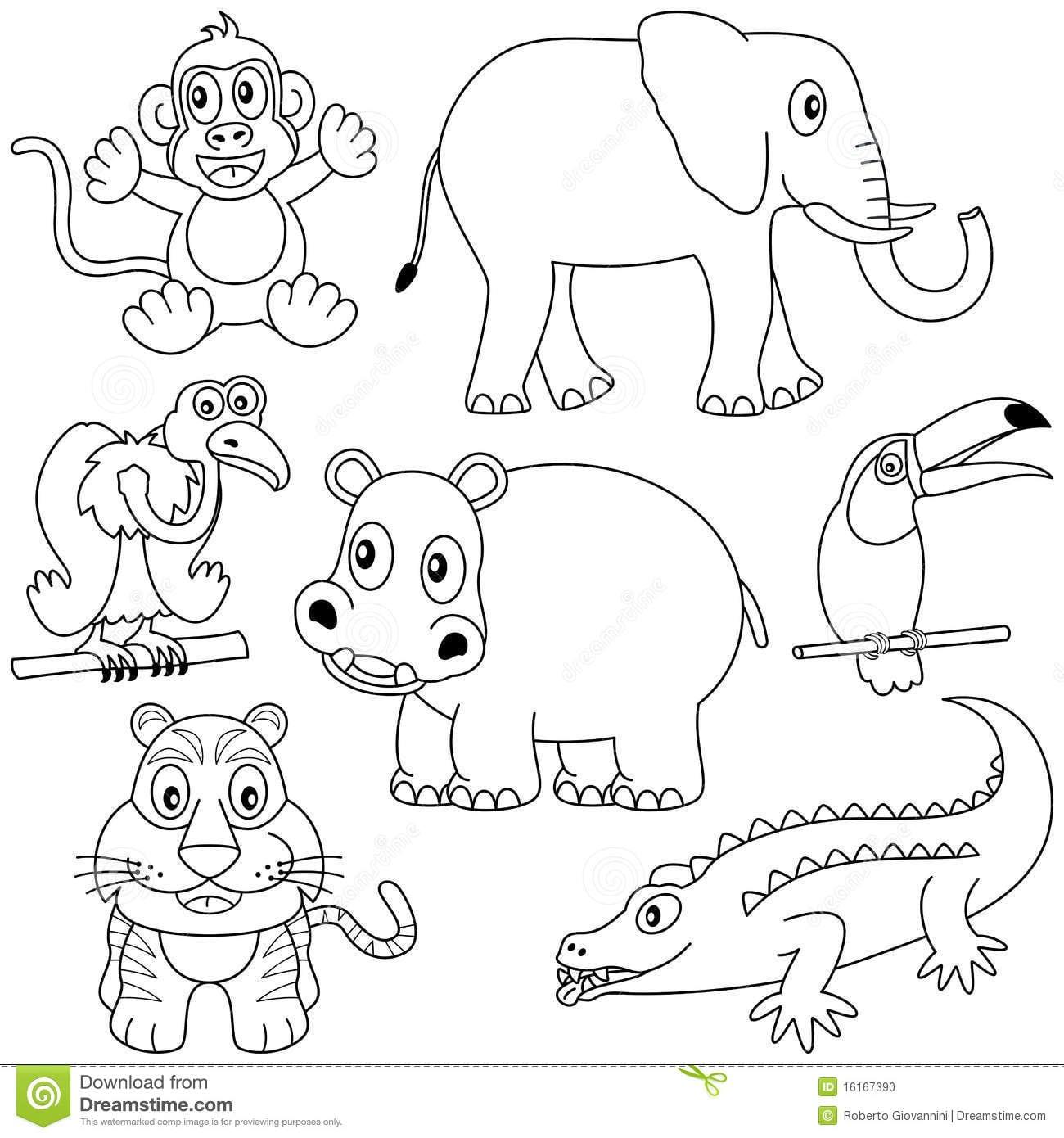 Desenhos De Mamiferos Para Colorir