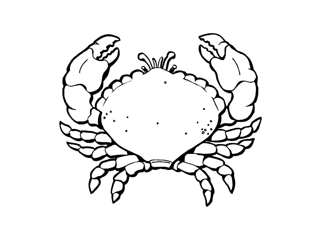Free coloring pages of mr crab