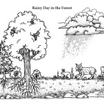 Habitats (Biomes)
