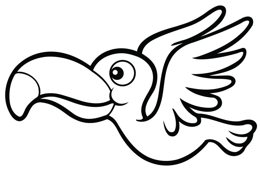 a toucan coloring page  free printable coloring pages for