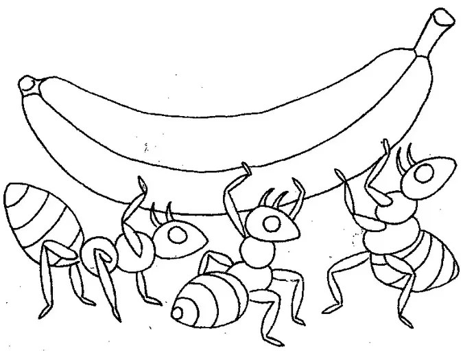 Ant Food Coloring Page coloring page & book for kids.