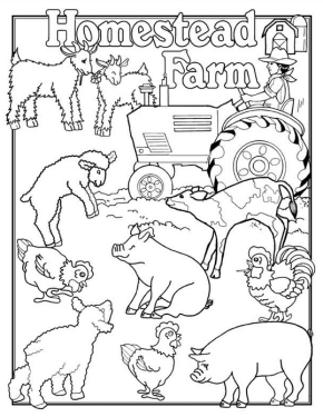 Animal Farm Quotes Page Numbers. QuotesGram