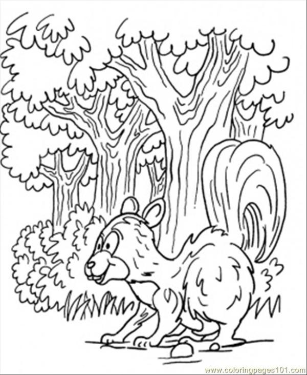 forest coloring page # 41