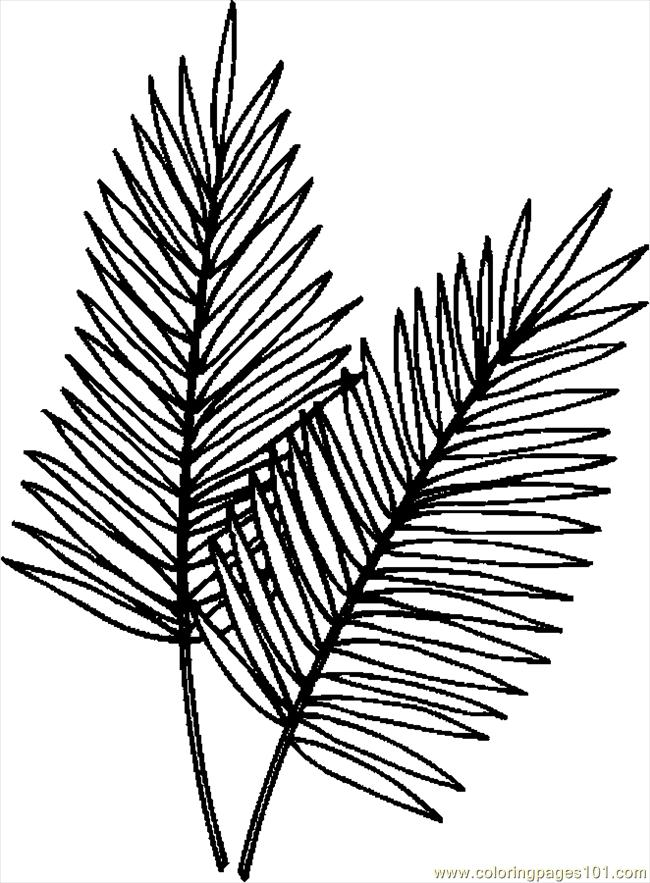Palm Leaves Coloring Page Free Holidays Coloring Pages