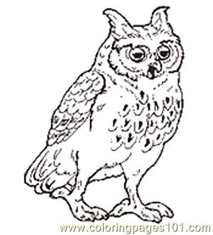 The Mitten Mural Owl Coloring Page Reversed Coloring Page
