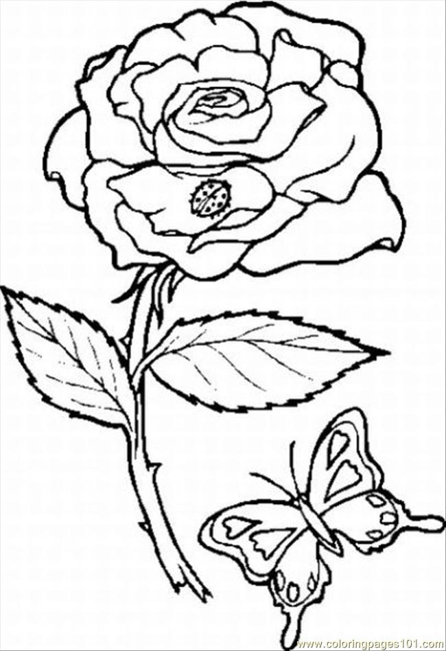 Coloring Pages Flower Coloring Pages Iris Natural World