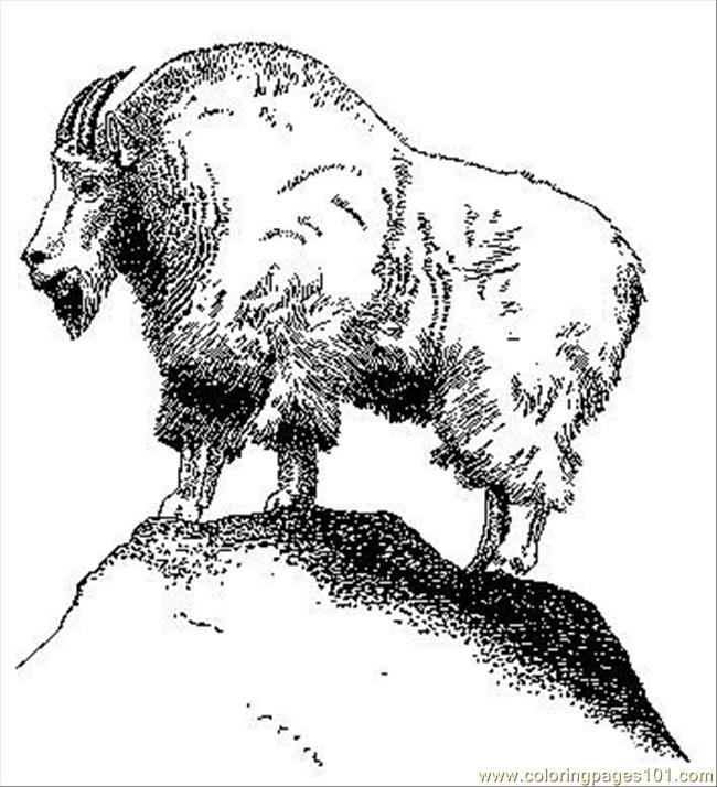 Coloring Pages Mountain Goat (Natural World > Mountain
