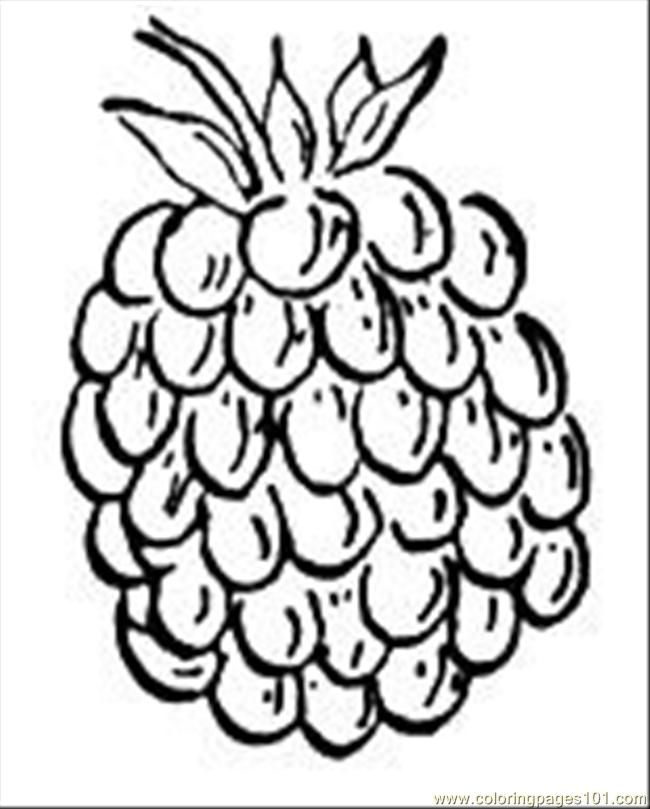 raspberry Colouring Pages