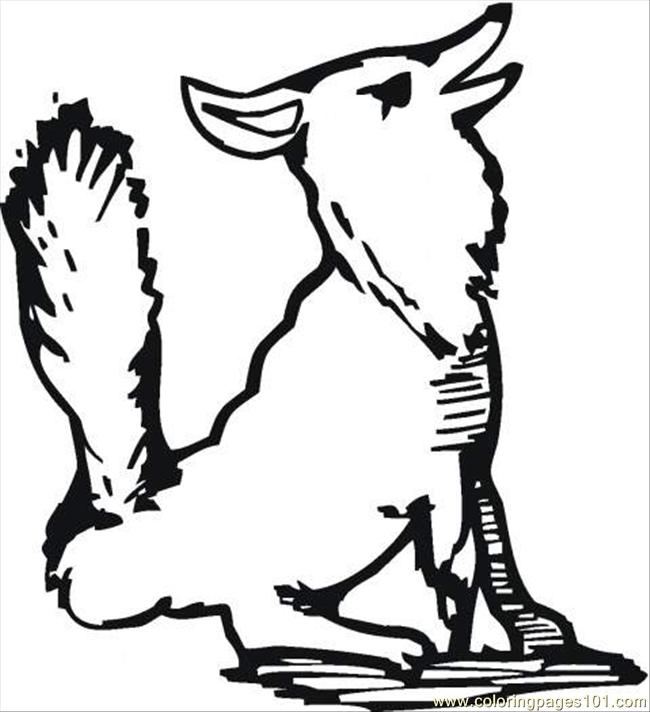 Coloring Pages Wolf Outline Coloring Page (Animals > Wolf