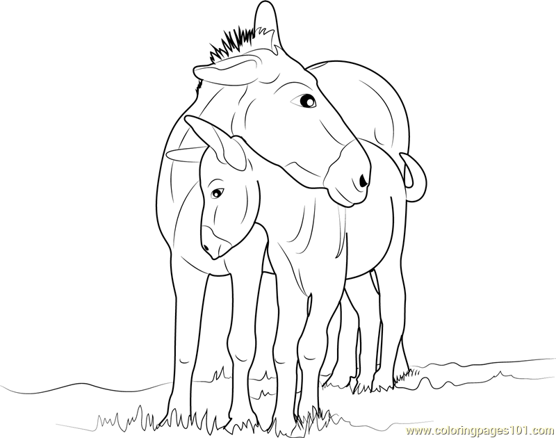 Mother And Baby Donkey Coloring Page Free Donkey Coloring Pages Coloringpages101 Com