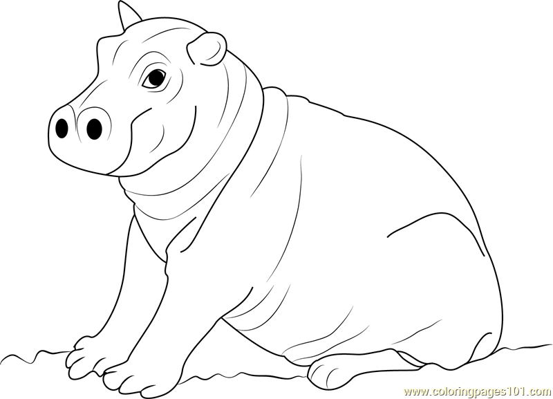 Cute Hippopotamus Baby Coloring Page Free Hippopotamus Coloring Pages Coloringpages101 Com
